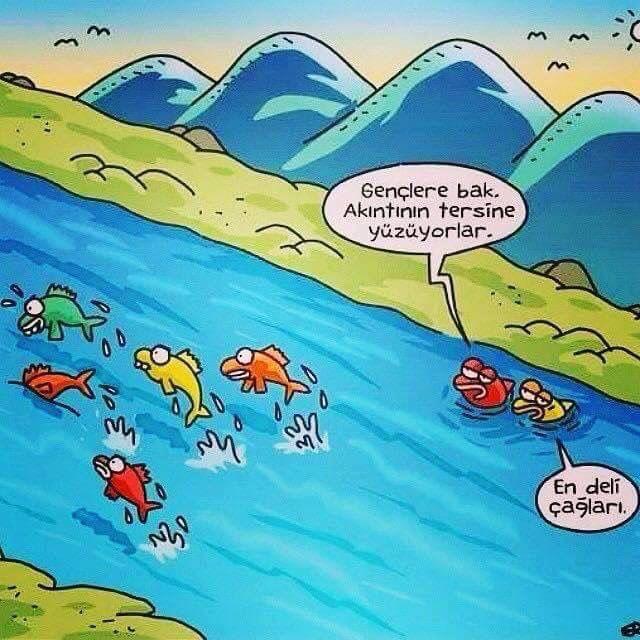 Akıntının tersine yüzmek...