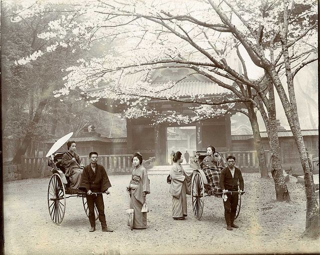 """Sheba Temple, Tokyo, in cherry time"""". Photograph taken by Herbert Ponting (1870-1935)"""