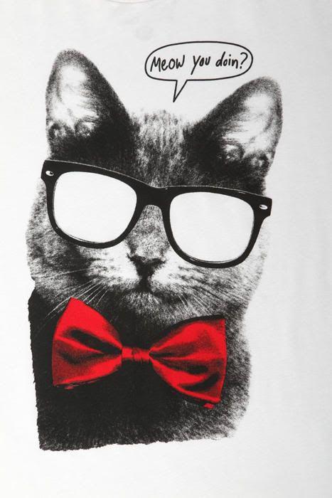 Hey, Meow ya doin'!?