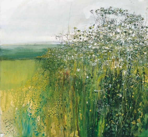 kurt jackson, cow parsley