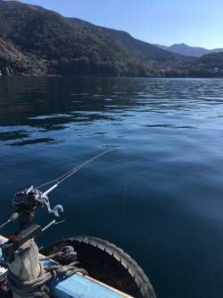 【画像】朝から海釣りに行って来たぞ → 本日の釣果がこちらwwwwwwwwwwwwWww