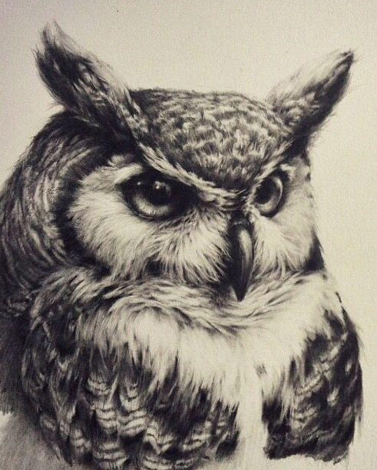 Great Horned Owl Black And Grey Tattoo Pin de Brett Ro...