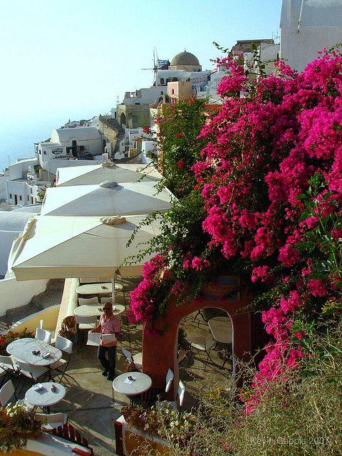 ღღ The Bougainvillea is stunning! ~~~ Village of Oia on the Greek island of Santorini | Flickr - Photo Sharing!