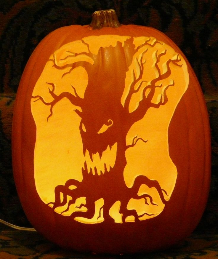 Images about pumpkin carvings at ken s patch
