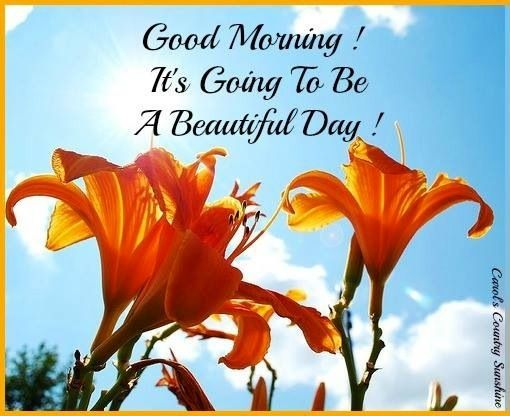 Good Morning Beautiful Spanish : Best greetings images on pinterest good morning