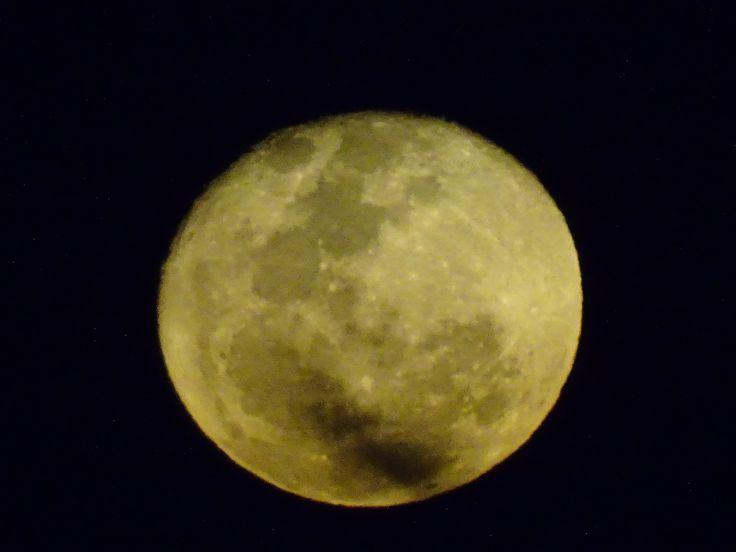 LA LUNA A María Kodama  Hay tanta soledad en ese oro. La luna de las noches no es la luna que vio el primer Adán. Los largos siglos de la vigilia humana la han colmado de antiguo llanto. Mírala. Es tu espejo.  JORGE LUIS BORGES