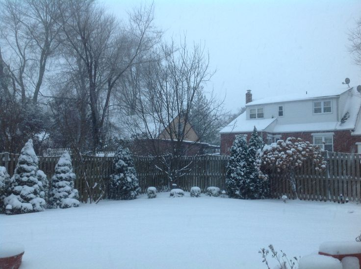 NJ snow storm Jan 2014