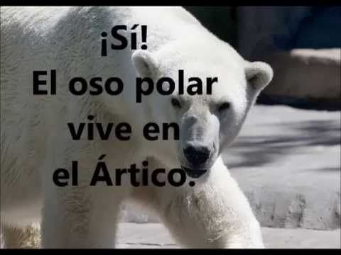 Los animales del Ártico y Antártida, documental