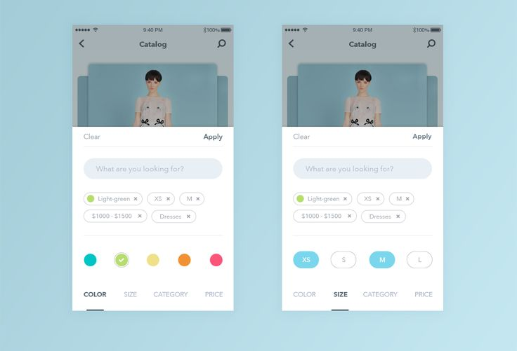 Nice Fashion Filter Animation – User interface by Anna