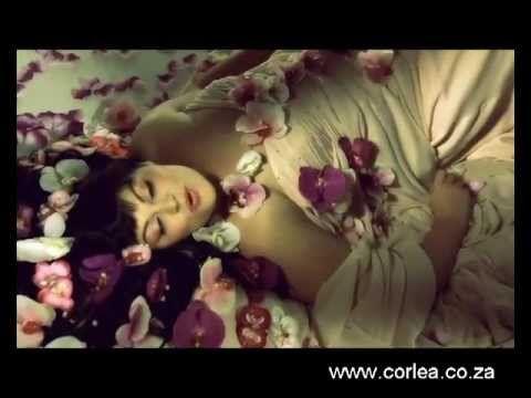 Corlea Botha - SONVANGER (OFFICIAL / AMPTELIKE MUSIEK VIDEO)