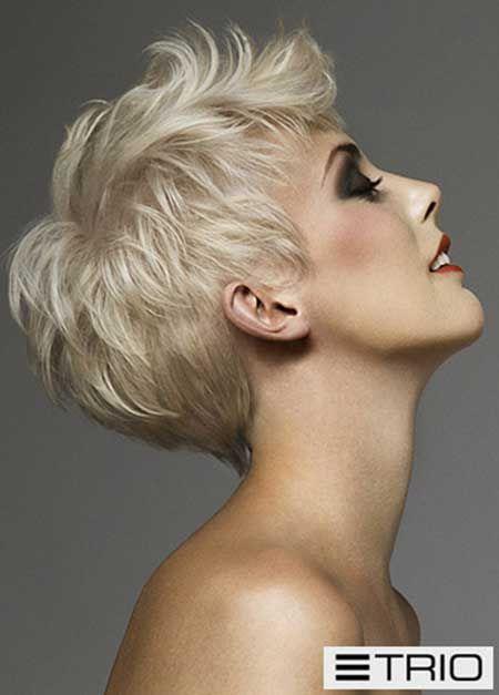 http://www.short-haircut.com/wp-content/uploads/2014/03/Latest-Short-Blonde-Hairstyles_19.jpg
