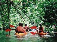 Wailua River Kayaking, Kauai, Hawaii - this was way fun...