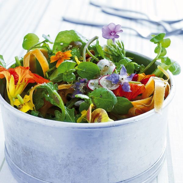 Burzelkraut oder Portulak ist eine Gemüse- und Würzpflanze mit zarten, fleischigen Blättern. Sie zeichnet ein sanft säuerlich-nussiger Geschmack aus.