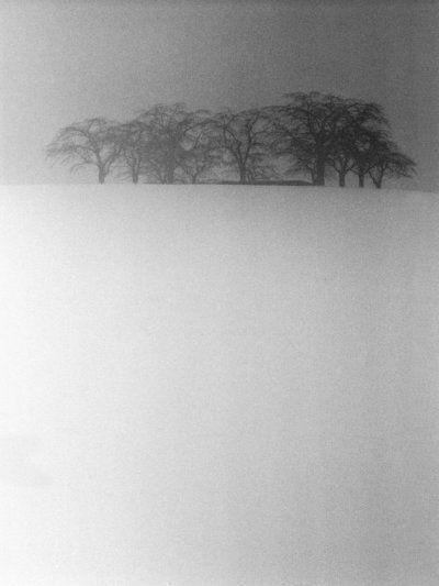 /doden-i-svartvitt-3.jpg