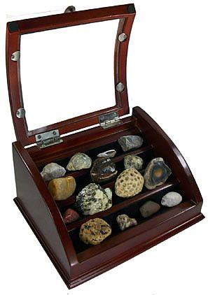rock display box. picking