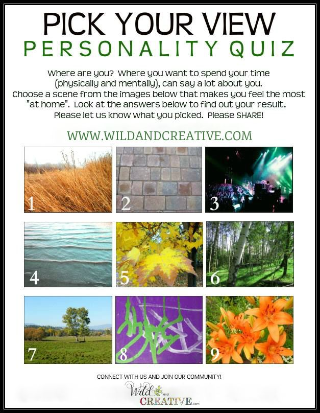 PICK YOUR VIEW! - Personality Quiz Click to find out your answer...  www.wildandcreative.com #personalityquiz #free
