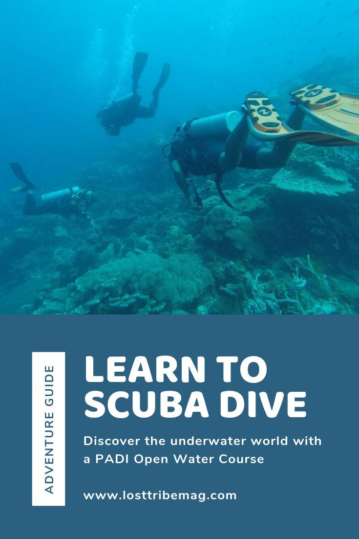 Learn To Dive With The World Class Padi Open Water Course Head To Utila Hondur Class