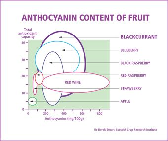 The role of anthocyanins in improving memory and Alzheimer's disease