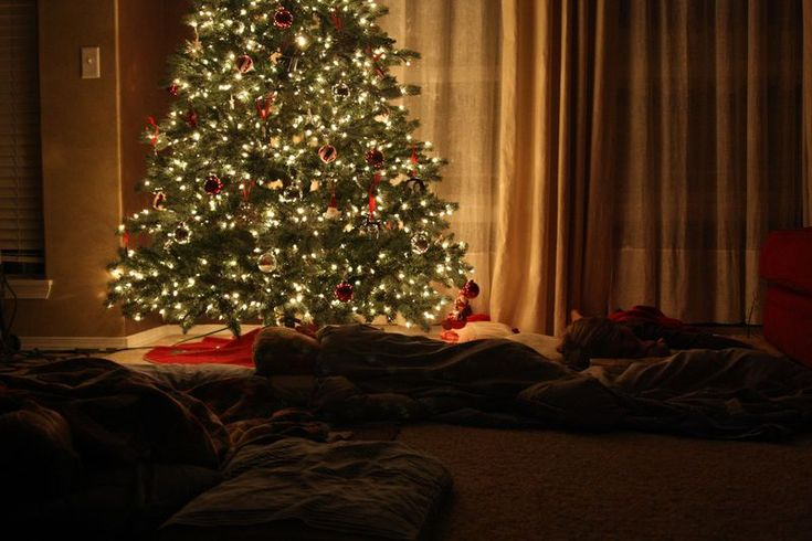 Watch Polar Express and Sleep Under the Christmas Tree