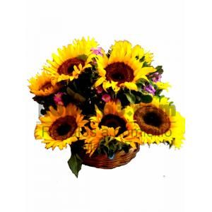 Hermosos Girasoles para decorar su casa u oficina. Sorprende a domicilio!  Sunflowers (Girasoles a domicilio envío gratis al D.F.) - Envio de Regalos a Domicilio y Flores a Mexico DF | WhatsApp 5544482519 Tel.56885461 | Kokoro3.com