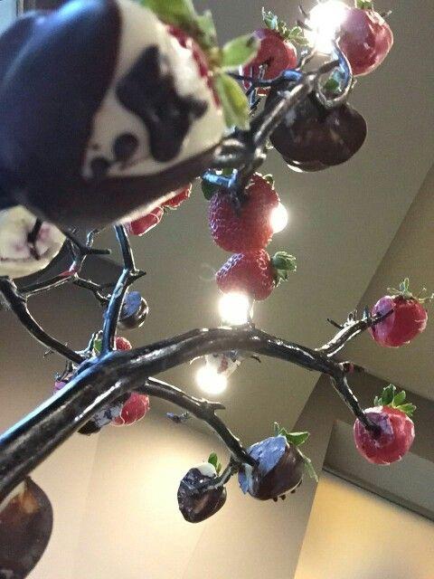 fresas tuxedo