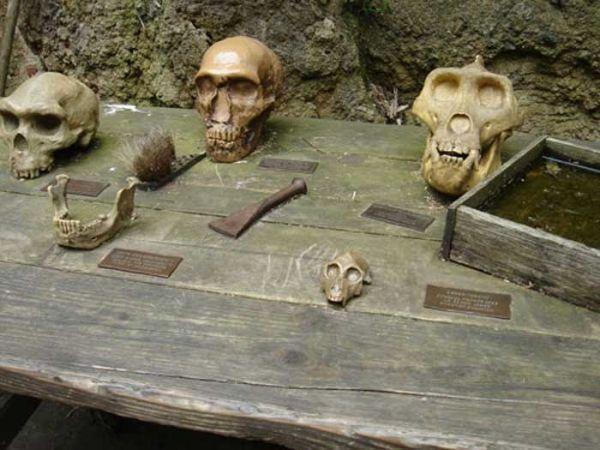 Beschilderung Aus Tombak Fur Den Tisch Der Archaologen Auf Dem Gorillaberg Im Zoo Hannover Das Tombakblech Wird Uber Ein Rostiges Blech