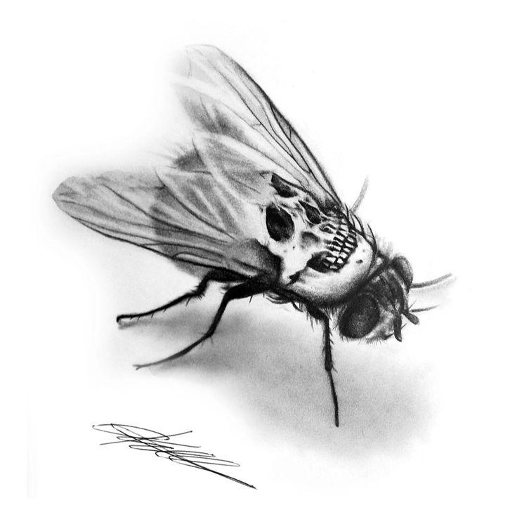 Fly scull pencil illustration, art, print, wall art, dark