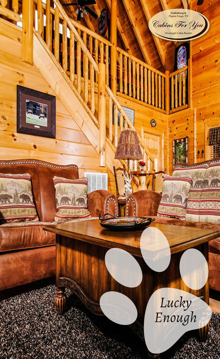 cabins friendly pet between forge gatlinburg lover bedroom hot pigeon with tub cabin s lake and