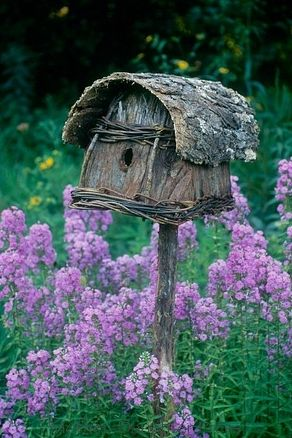 rustic birdhouse in the purple phlox