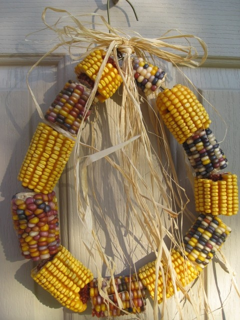 Indian corn wreath/ATTRACTS: Birds. Decorate your habitat with. Best left on cobs. Will attract Squirrels.