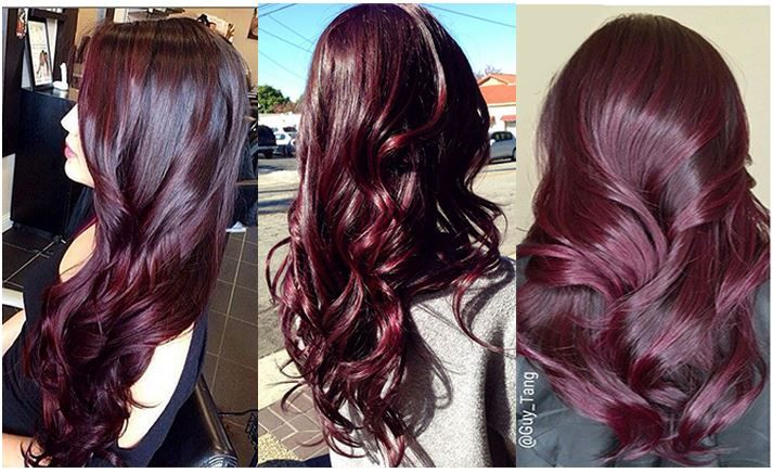 aubergine hair - Google Search