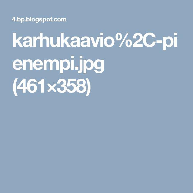 karhukaavio%2C-pienempi.jpg (461×358)