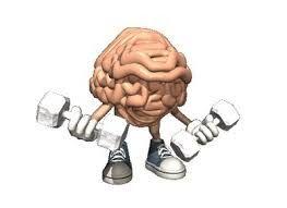LoQueSuMedicoNOsabe : De las rutas metabólicas al cerebro egoísta