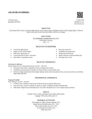 Internship Resume Sample 12