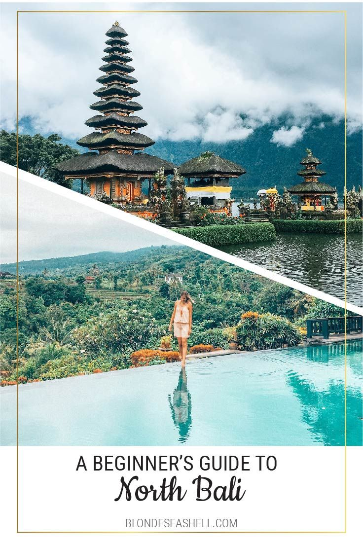 Where to stay and what to see in North Bali Lovina