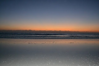 Brevard County, Florida - Brevard County's Sea Turtle nesting season has started and will remain in effect through October 31, 2012.