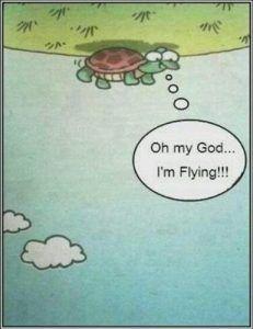 De kracht van positief denken. Je gaat je er echt beter door voelen!