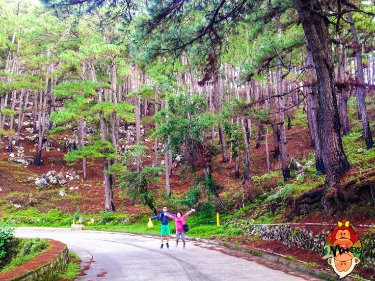 DIY Travel Guide-Baguio, Ifugao and Mountain Province