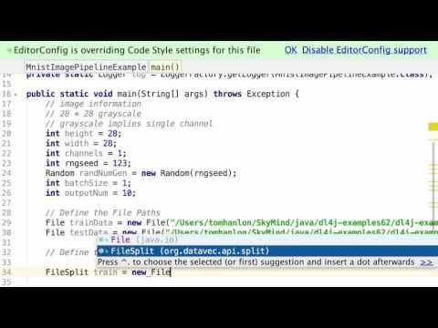 This screencast shows how to use Skymind's DataVec to build an image pipeline to prepare data for processing in a Neural Network using DeepLearning4j. Topics covered include, ParentPathLabelGenerator and Image Scaling.