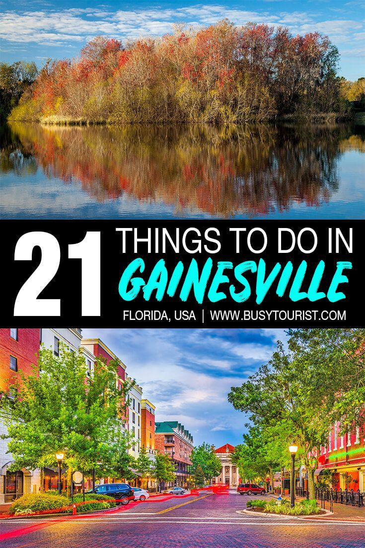 21 Fun Things To Do In Gainesville Florida Gainesville Florida Florida Adventures Florida Travel