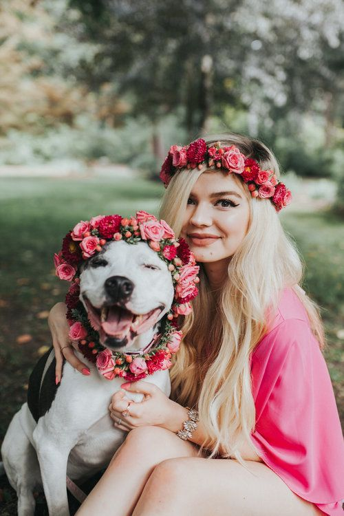courtney of designs by courtney made my pitbull daisy + i matching flower   crowns! we did this shoot to celebrate me reaching 10k on instagram and it   is my favorite shoot i have ever done!! i am also obsessed w my dog. i have   seen pitbull puppies wearing flower crowns but i've never seen anyone