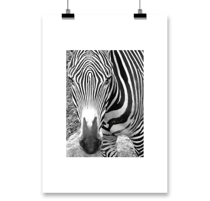 http://www.bynina.se/produkt/zebra/