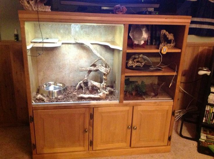 Here is our finished enclosure for my sons Ball Python. Still monitoring the temperatures to be sure we'll be maintaining Good temp away from the hot spots.