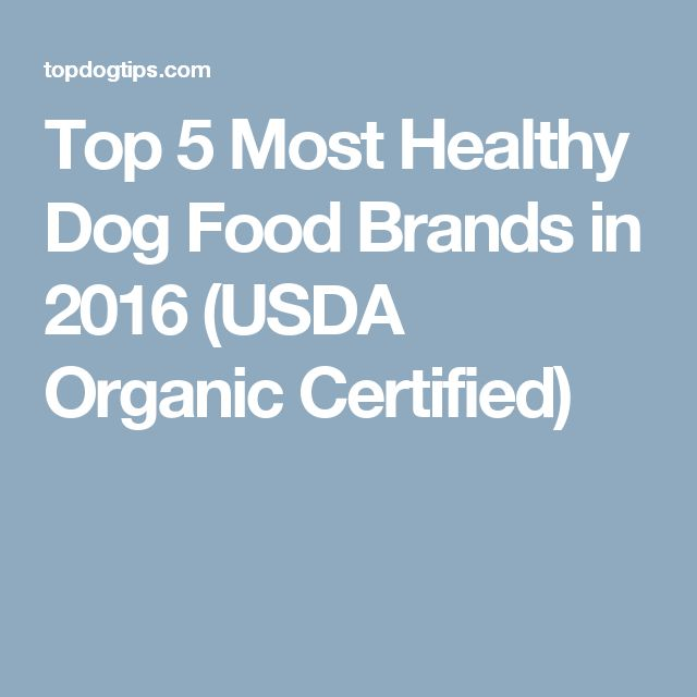 Top 5 Most Healthy Dog Food Brands in 2016 (USDA Organic Certified)
