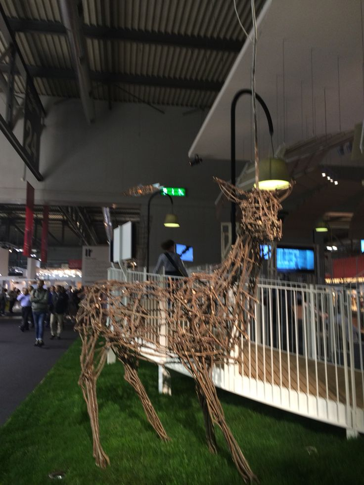 Deer of Delucchi