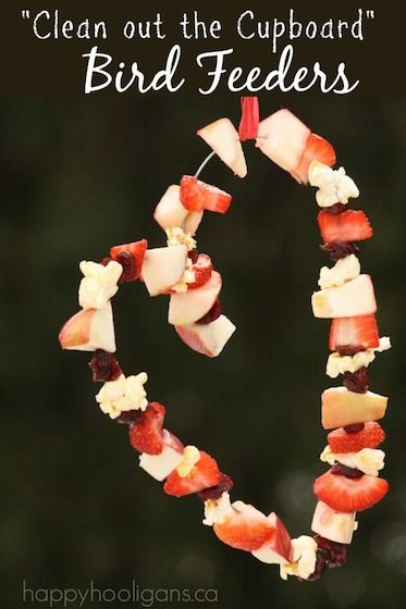 Make a simple bird feeder with fruit scraps and popcorn. Great way to use up fruit that's past its prime, and a super way to help the birds through winter. - Happy Hooligans