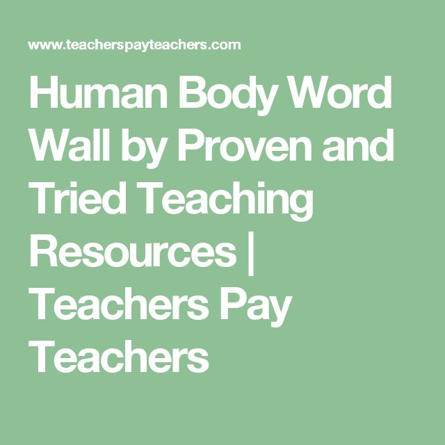 Human Body Word Wall by Proven and Tried Teaching Resources    Teachers Pay Teachers