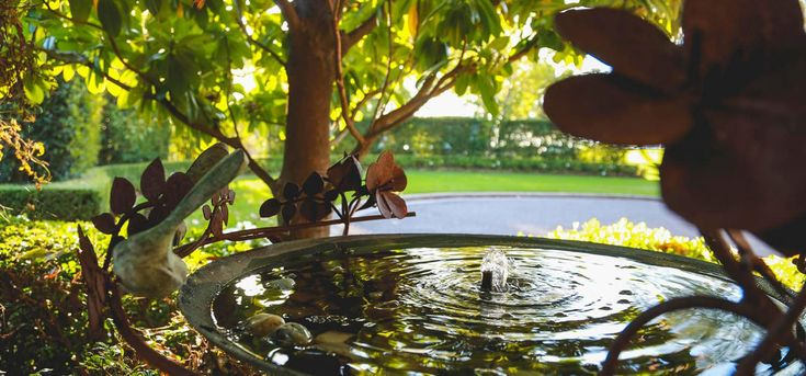 Bubbling fountain in our landscaped hotel grounds ... your home away from home - Sydney accommodation and hotel