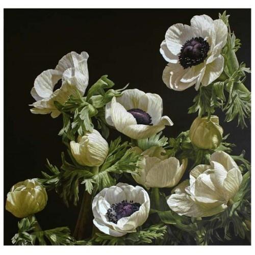 Mia Tarney - White Anemones