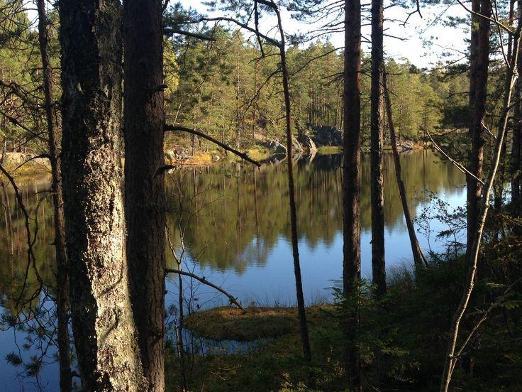 Kaislampi, National Park Nuuksio, Veikkola, Finland